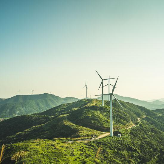photo taken in zhoushan island,zhejiang province,China.